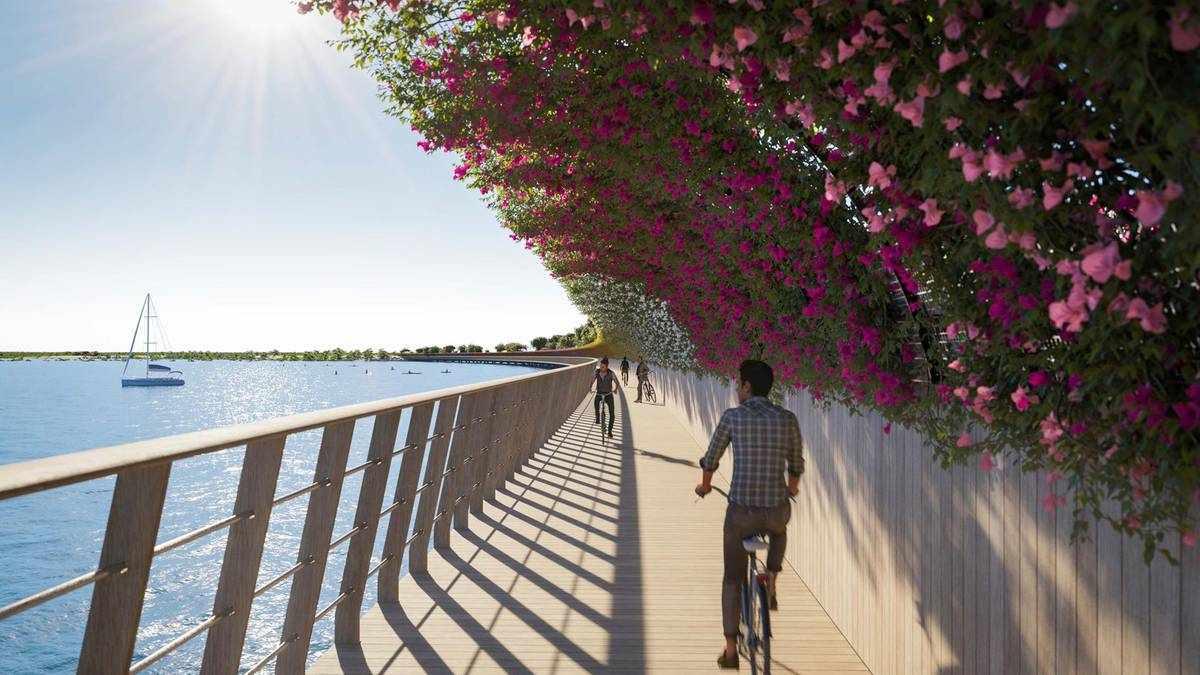 saudi-arabia bridge island hub sea