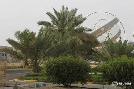 saudi-arabia campaign green