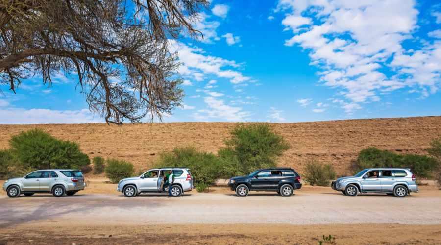 saudi mobility telgani profit sector