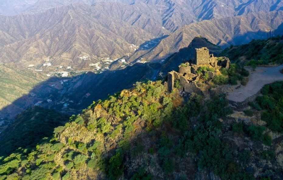 saudi sector tourism covid explainer