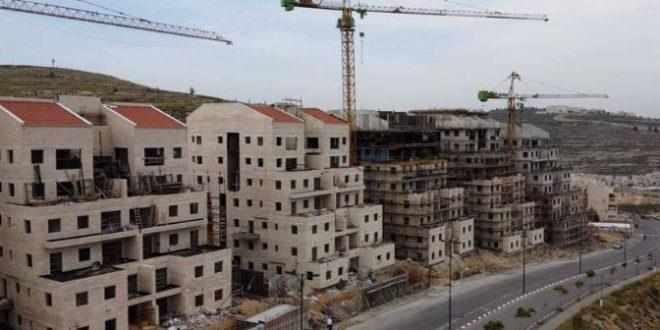 settlement, israeli, construction, occupied,