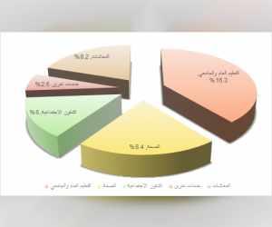 uae, budget, bin, sheikh,