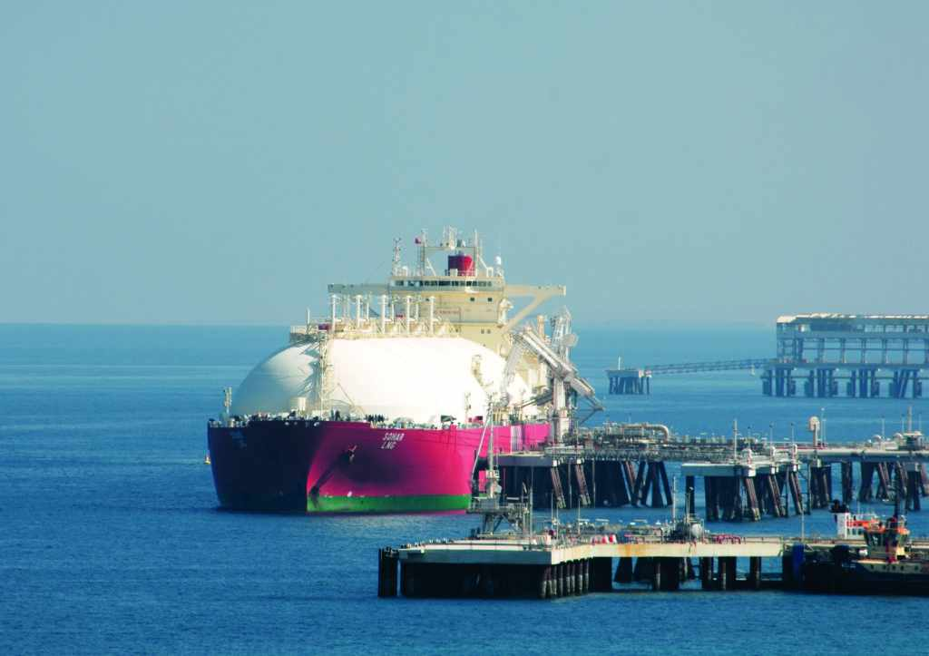 vitol shift oil power hardy