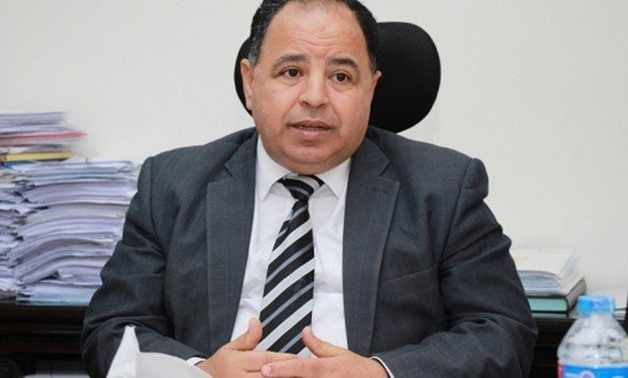 egypt government investments egp budget